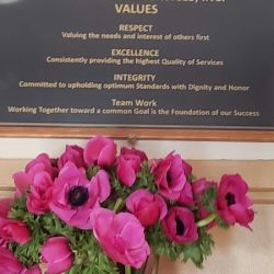 meghan-markle-flowers-to-unique-people-services_1